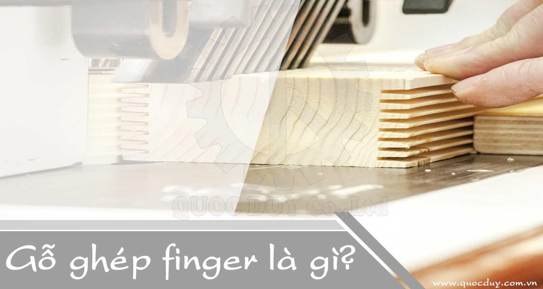 Gỗ ghép finger là gì ? quy trình sản xuất gỗ ghép finger | Quốc Duy